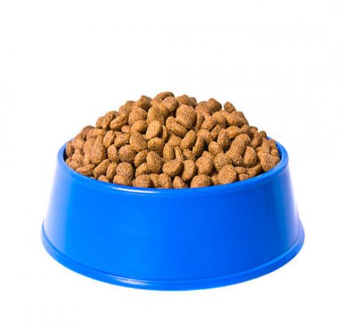 Alimento Seco perros