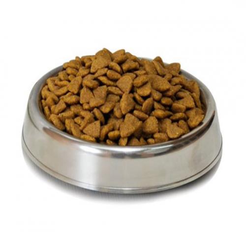 Alimento Seco Gatos