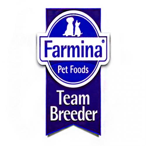 Team breeder (Criador)
