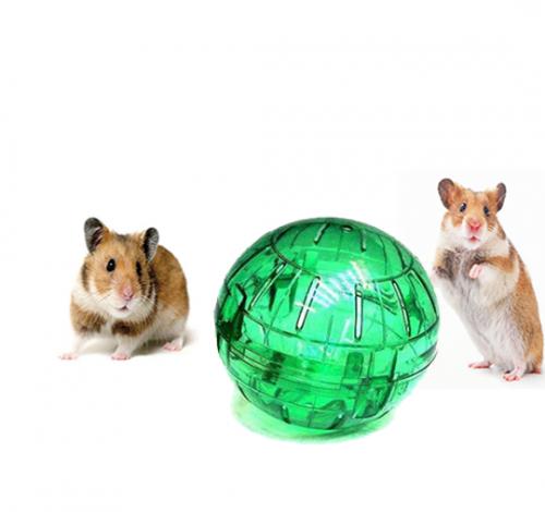 Accesorios Conejos y Roedores