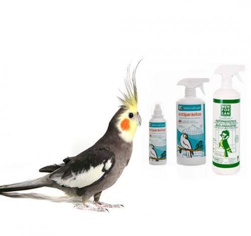 Desinfectantes Aves-pájaros
