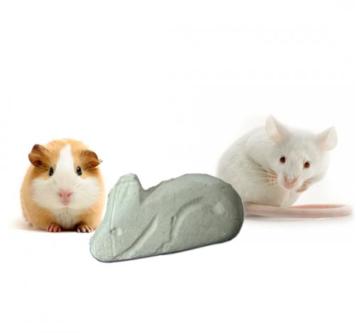 Calcios conejos y roedores